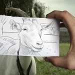 Amazingly Creative Drawing Vs Photography