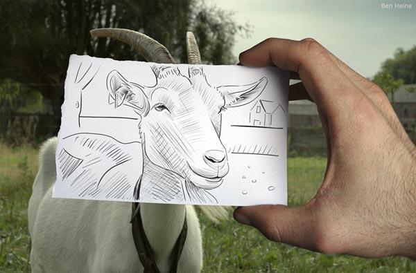Drawing Vs Photography