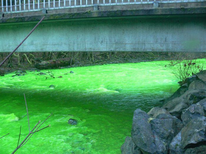Neon Green River Canada Photos-01