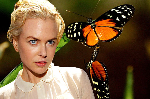Nicole Kidman is a lepidopterphobe. She is terrified of butterflies.
