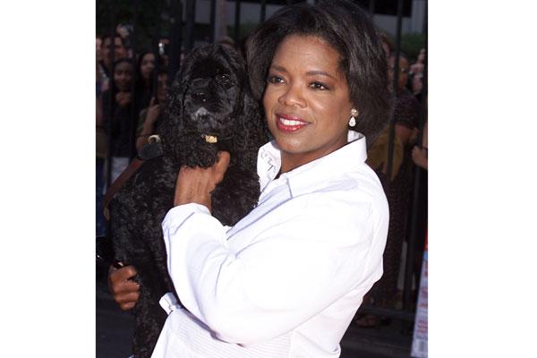 Oprah Winfrey - Sophie