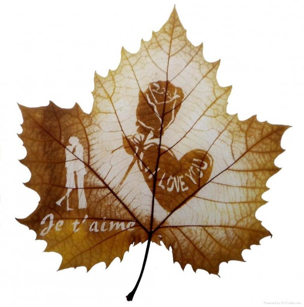 Amazing Leaf Carving  Artwork