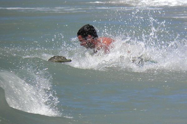 Crocks attack on a man