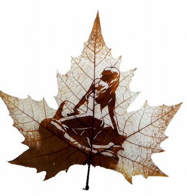 Delightful  Leaf carving Art 14