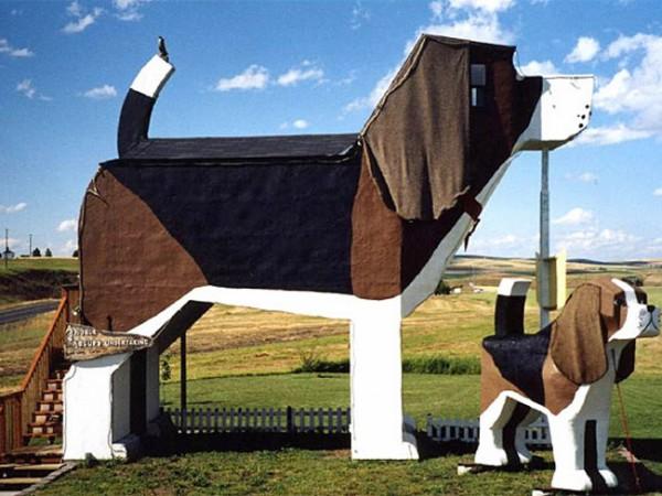 Dog Bark Πάρκο πιο εκπληκτικό πάρκο των ΗΠΑ, δημοσιεύτηκε από Nadeem