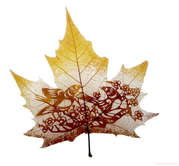 Leaf Carving Artwork Art 8