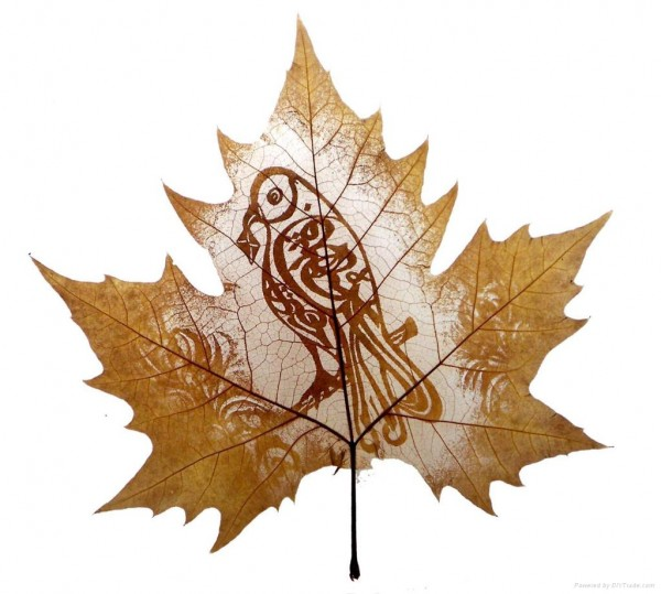 Most  Beautiful  Leaf Carving  Artwork 6
