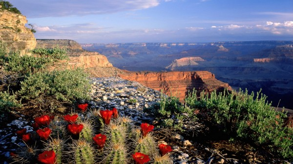 Grand Canyon, Arizona (USA)
