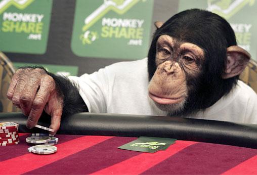 Monkey with poking