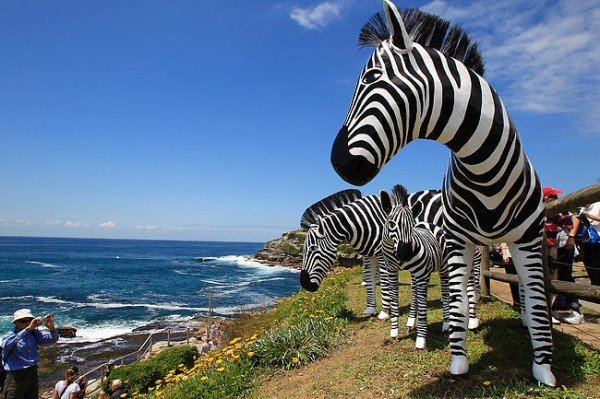 http://thewondrous.com/wp-content/uploads/2011/11/Sceplture-of-Zebras-at-Sydney-2011-600x399.jpg