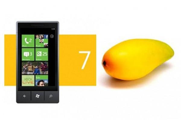 افضل المنتجات التقنية المتوقعة في سنة 2012 مع الصور Windows-Phone-7-Plat