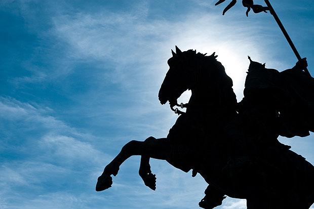 Wonderfull Horse Photography