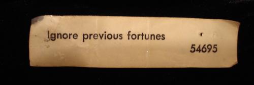Ignore Previous Fortune