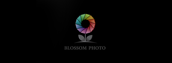 Blossom Photo is a small flower logo