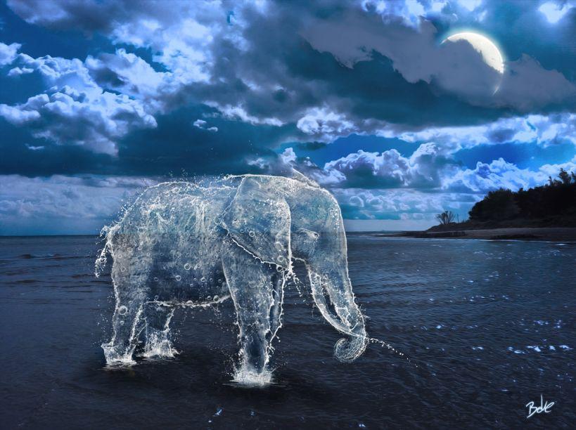Elephant Digital Art by BOKE
