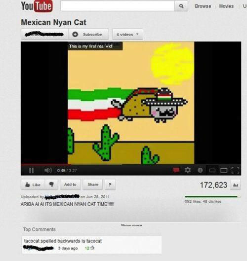 funny-youtube-comments-tacocat