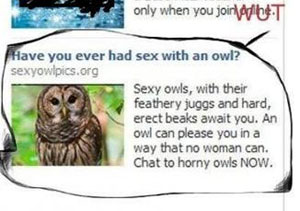 WTF Facebook Ads