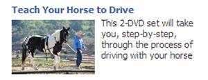 Facebook Ads-15