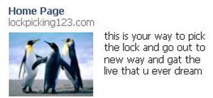 Facebook Ads-19