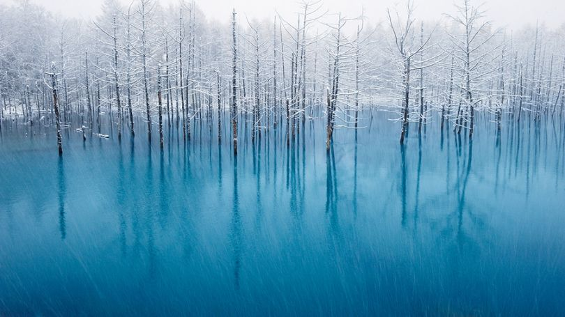 Landscape Story in the Pictures Kent Shiraishi