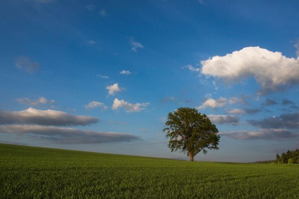 Wonderful Landscape Photography