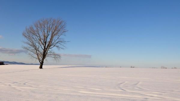 Amazing Landscape Photography by Kent Shiraishi