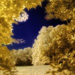 30 Excellent Examples of Infrared Photography