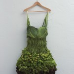 Amazing Food Art in the Work of Sarah Illenberger
