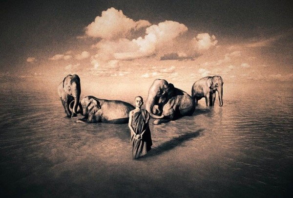 """Photo Project """"Ashes and Snow"""" by Gregory Colbert"""