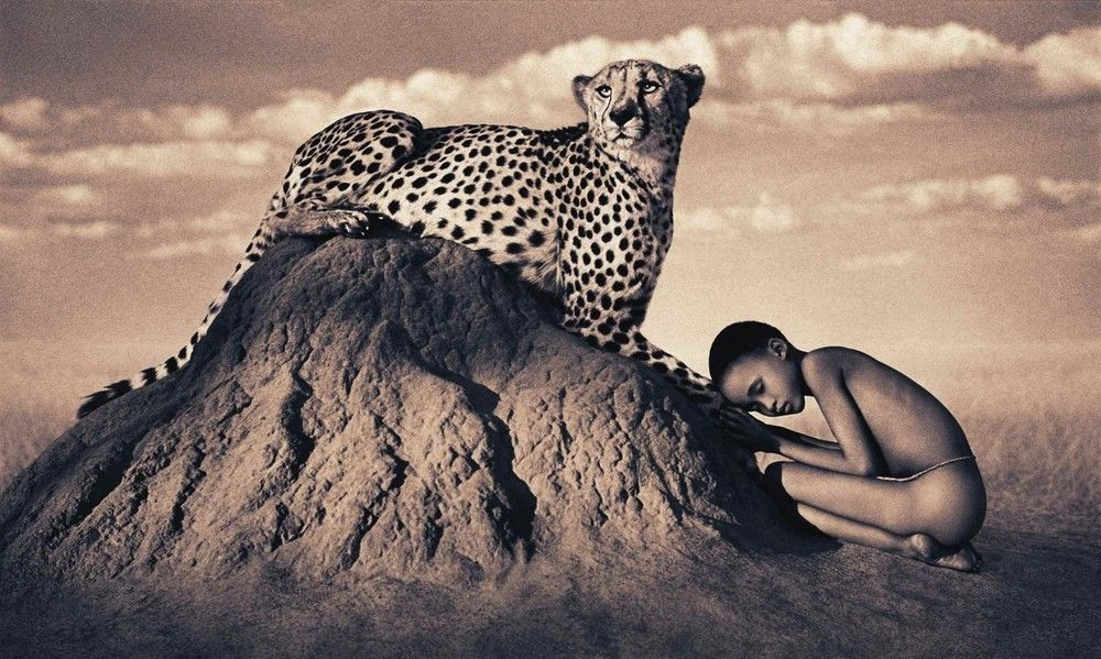 Gregory Colbert's Ashes and Snow Nature Masterpieces