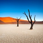 The Surreal Landscape Photography of Deadvlei