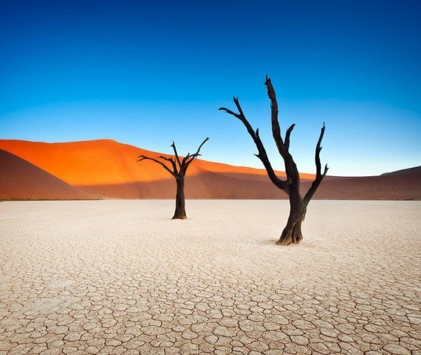 Landscapes of Deadvlei