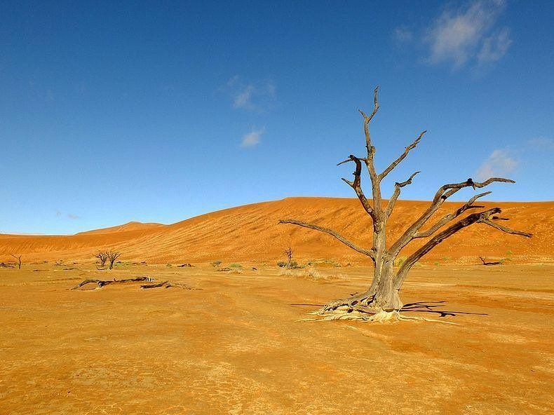 The Surreal Landscape Photography of Deadvlei