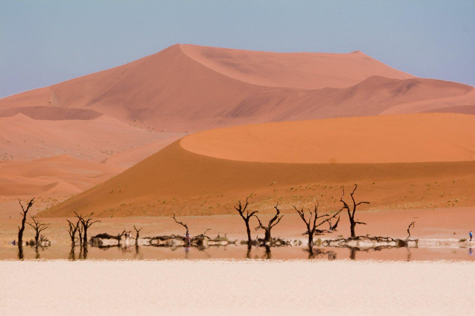 The surreal landscape photography of deadvlei the wondrous for Landscape images