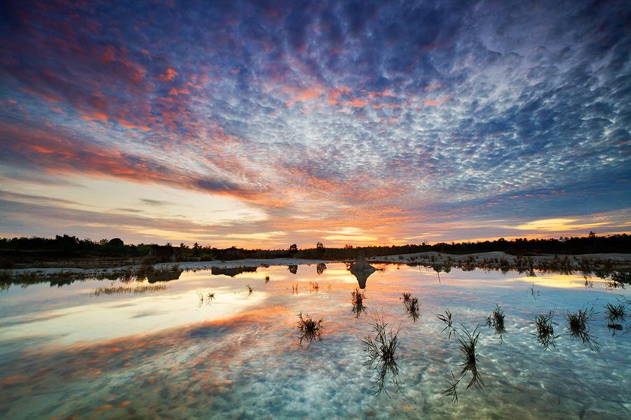 Morning Reflection by Bobby Bong