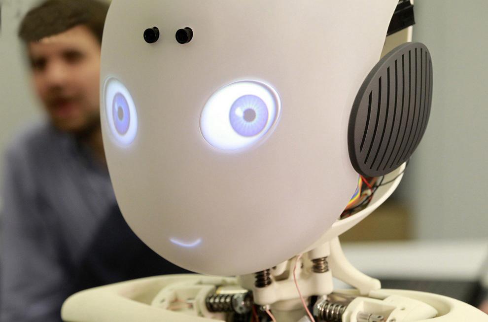 Roboy Robot Pictures