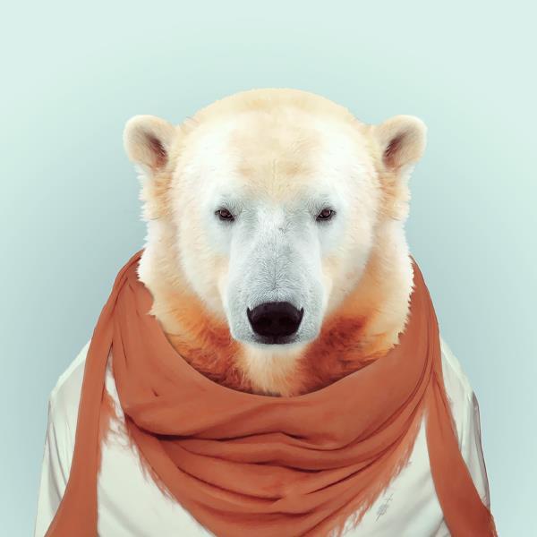 Animal Fashion Portraits
