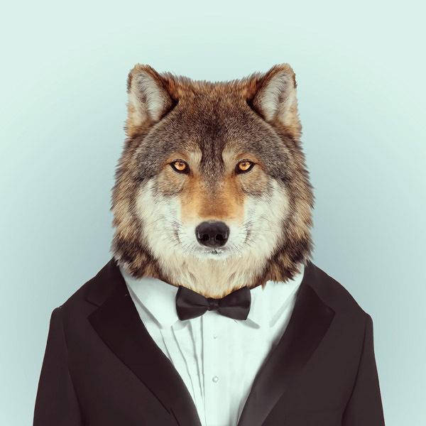 Animal As Fashion Models