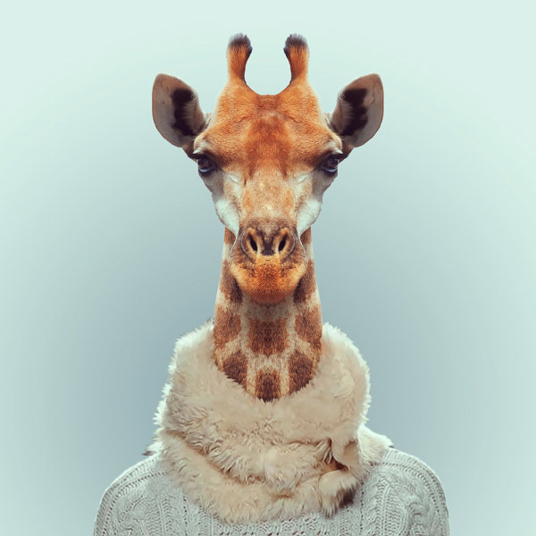 Heartwarming Zoo Portraits by Yago Partal