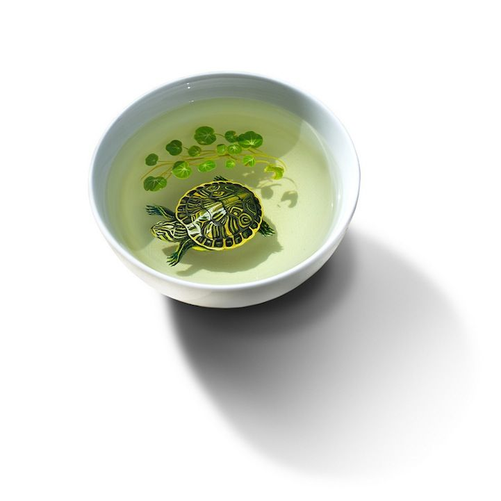 Hyper Realism in a bowl by Keng Lye