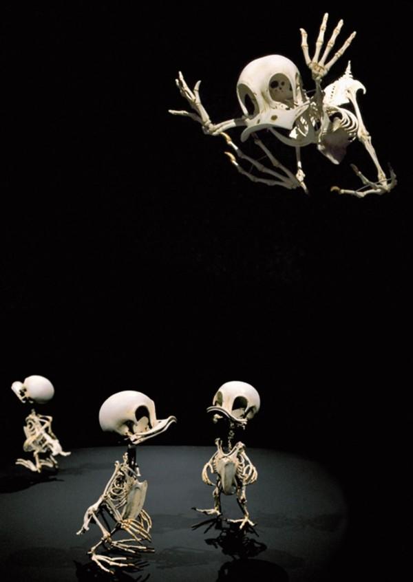 Cartoon Skeletons by Hyungkoo Lee