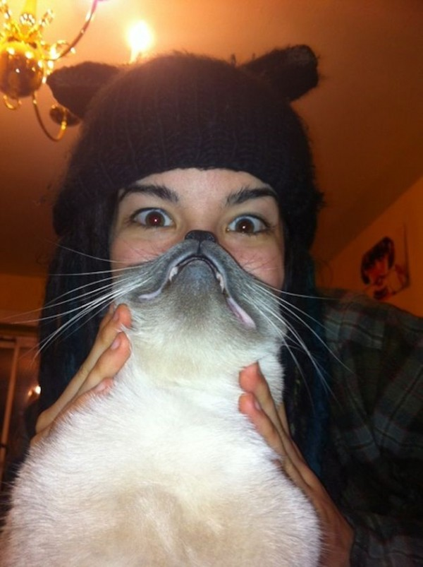 "Hilarious Pet Owners Take Photos with ""Cat Beards"""