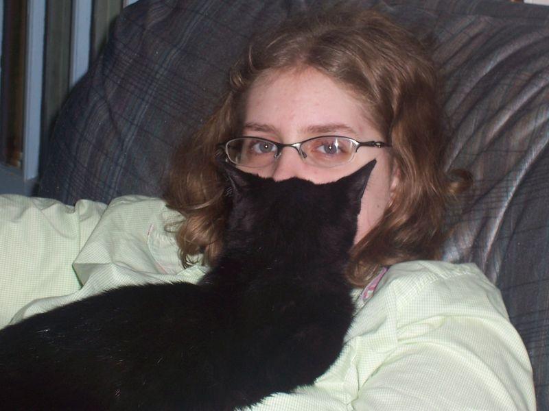 Cat Beards, A New Meme On The Internet