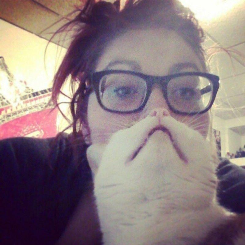 """Hilarious Pet Owners Take Photos with """"Cat Beards"""""""