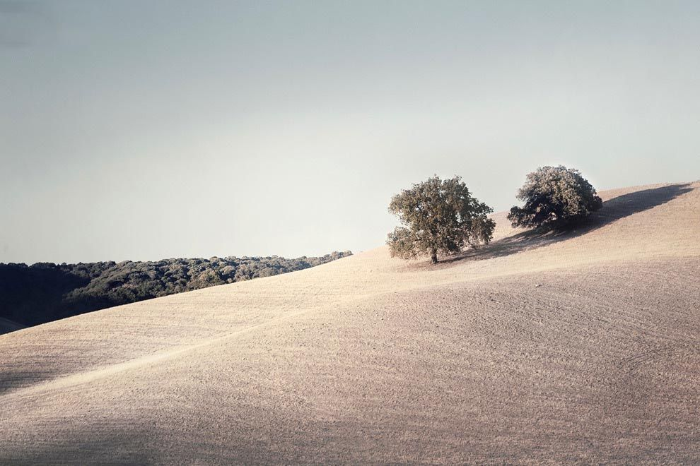 Claire Droppert Nature Photography