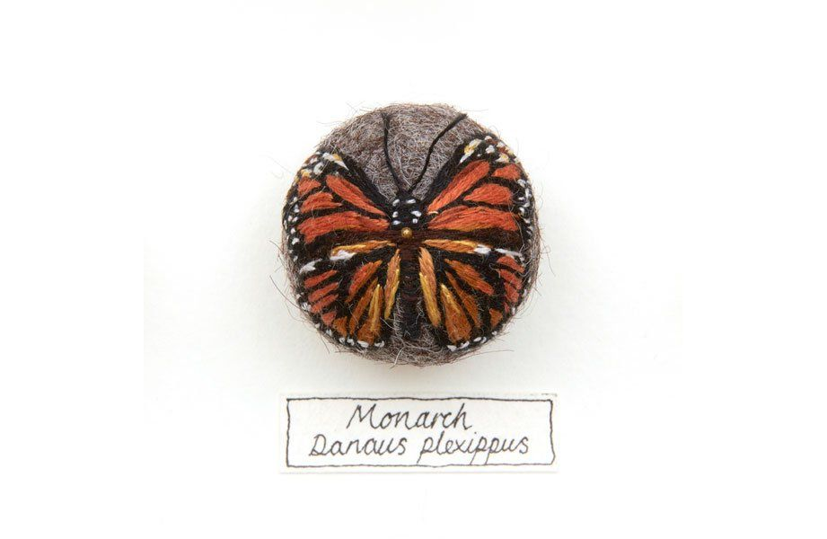 Felt insects by Claire Moynihan