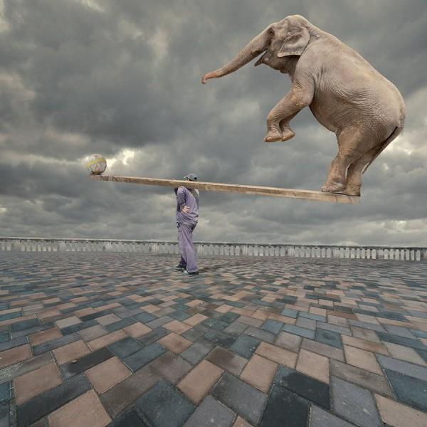 Balanced by Caras Ionut