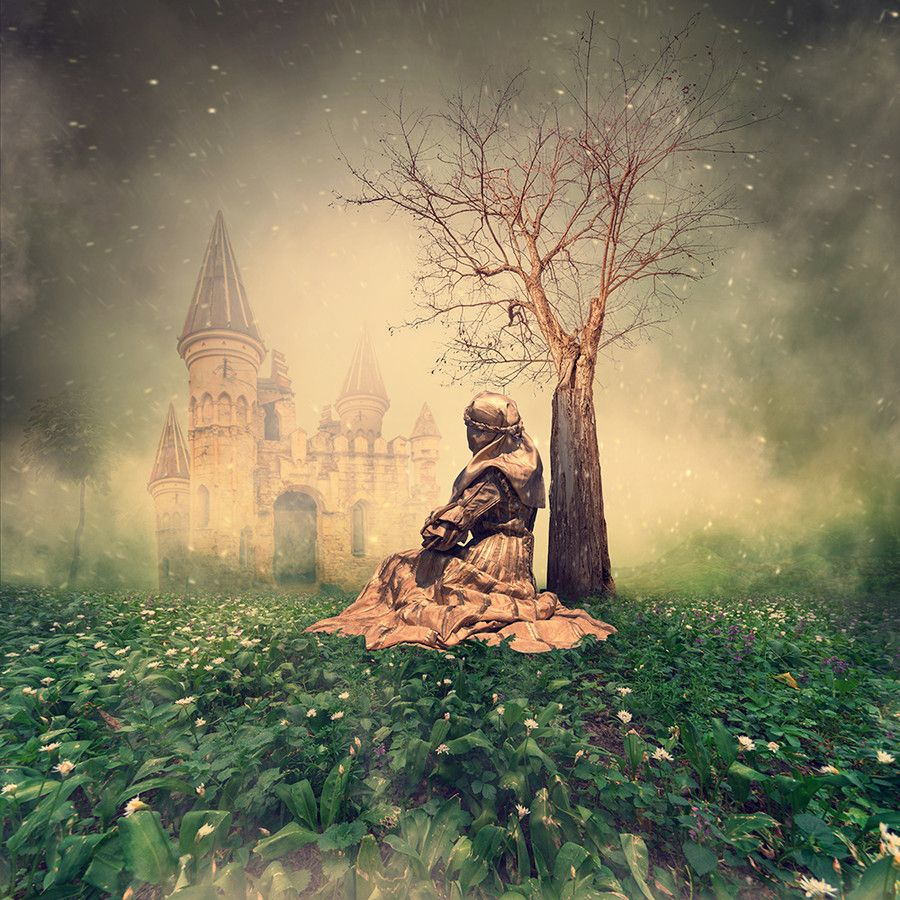 Lost garden of fairy by Caras Ionut