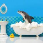 Secret Life of Plastic Toys (13 Pictures)