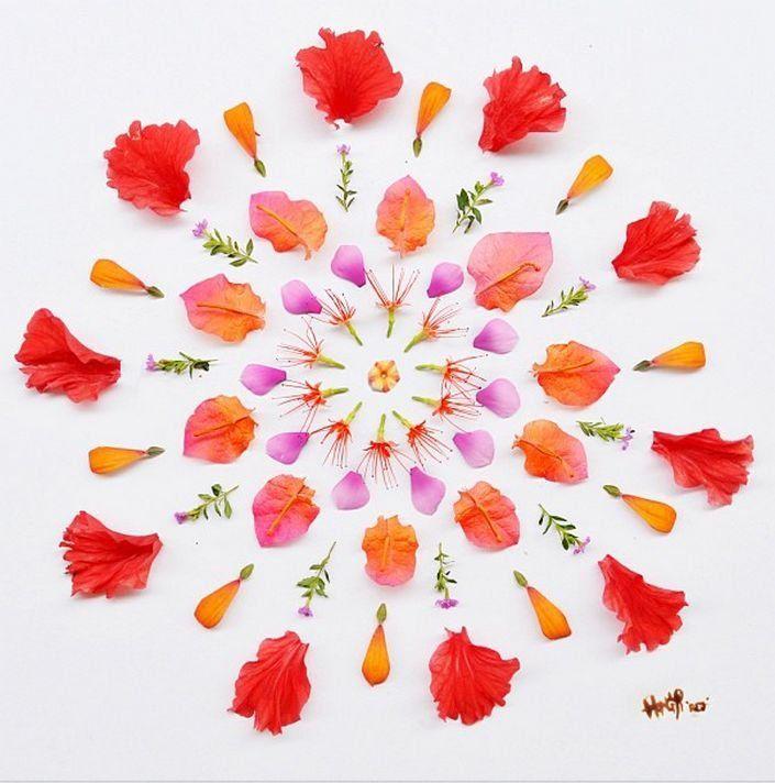 Hong Yi Flower Petals Art Works